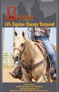 14-Equine-Energy-Texture